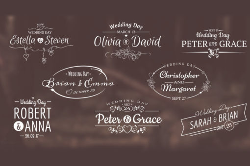 wedding titles motion graphics animations