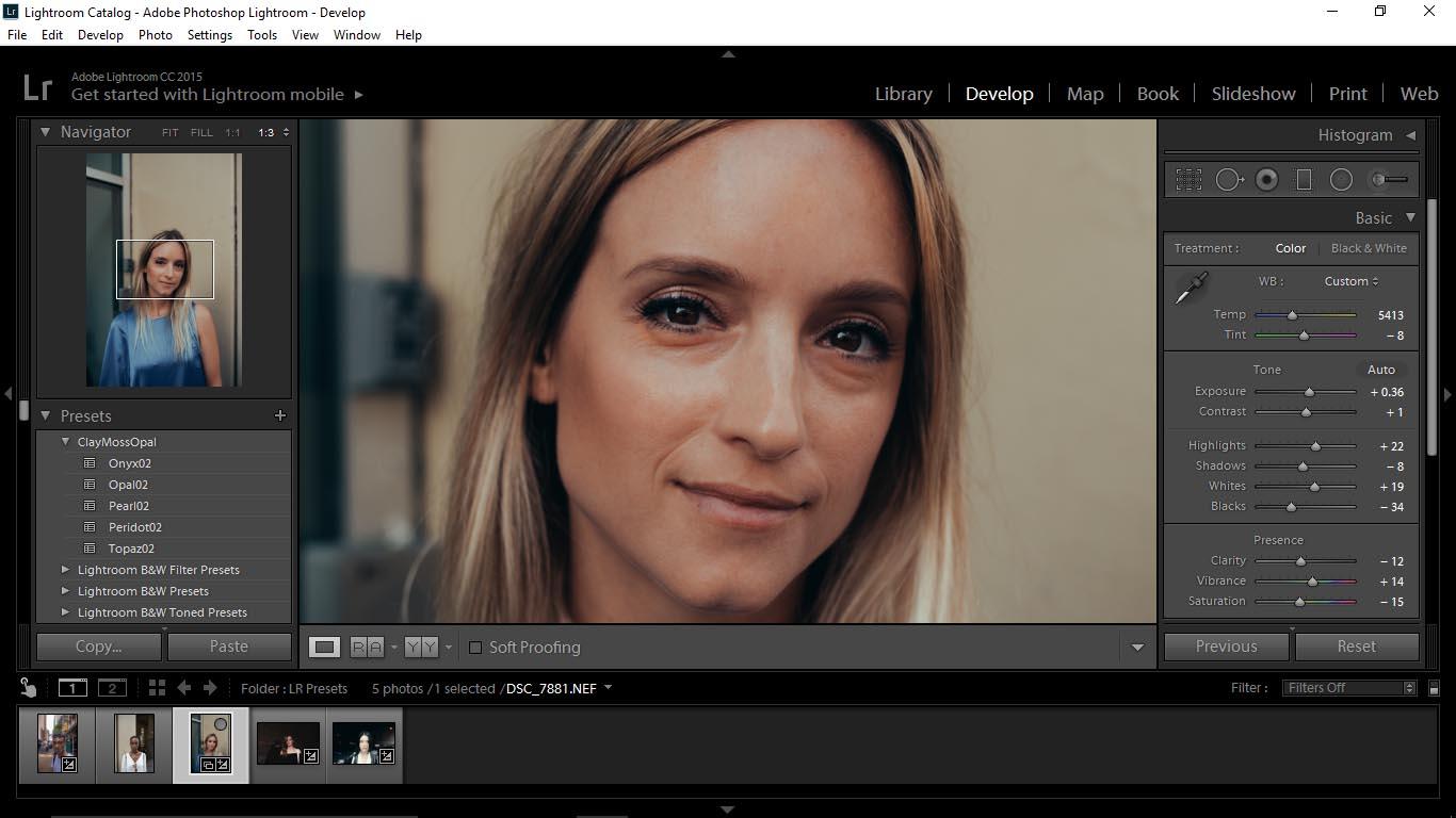 17 Editing Portraits Using Unique Lightroom Presets - FilterGrade Blog