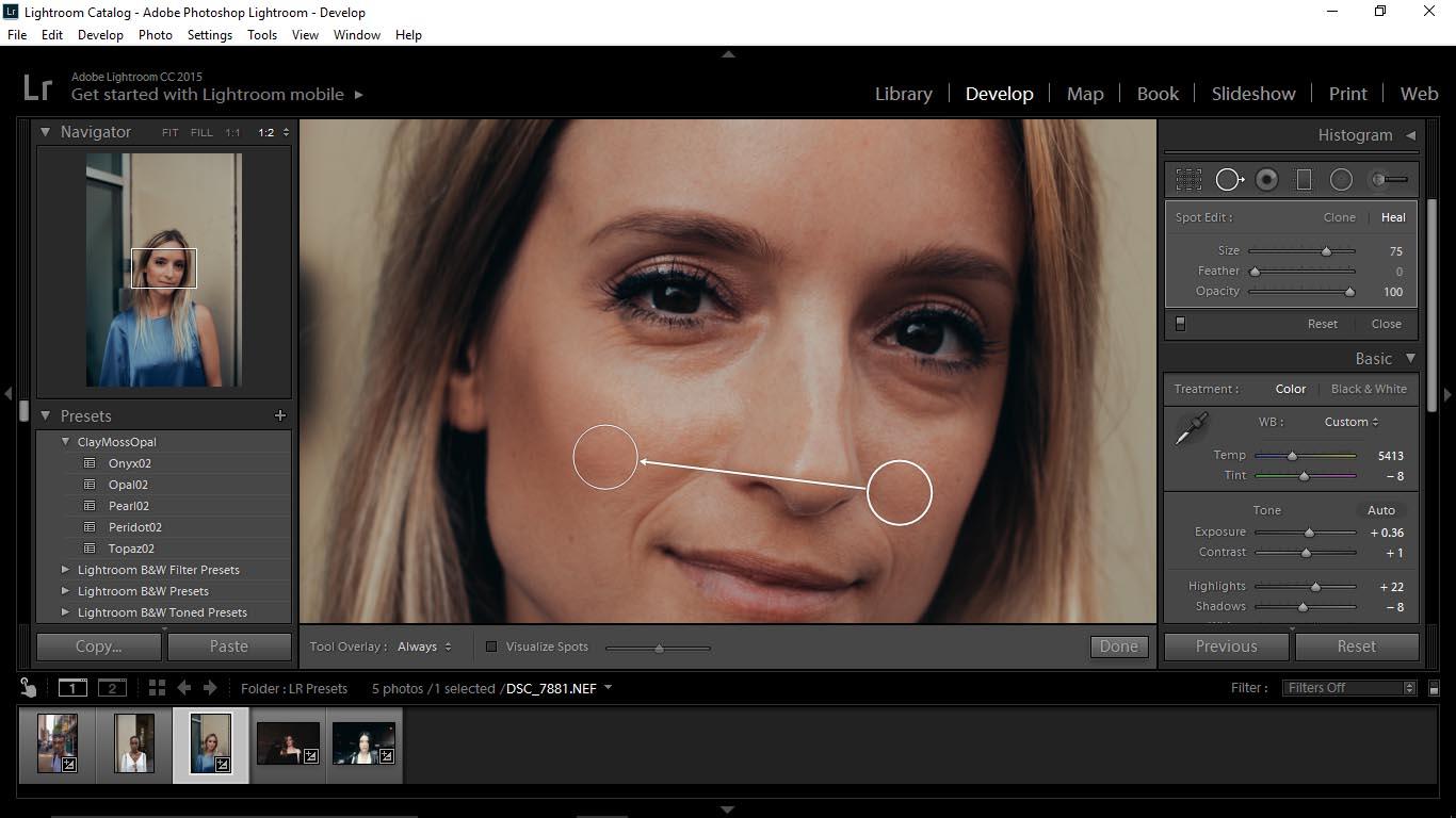 10 Editing Portraits Using Unique Lightroom Presets - FilterGrade Blog