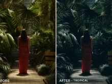 Tropical - Iustina Dumitrescu Lightroom Presets - FilterGrade