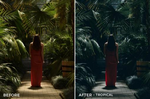 Tropical - Iustina Dumitrescu Lightroom Presets - FilterGrade