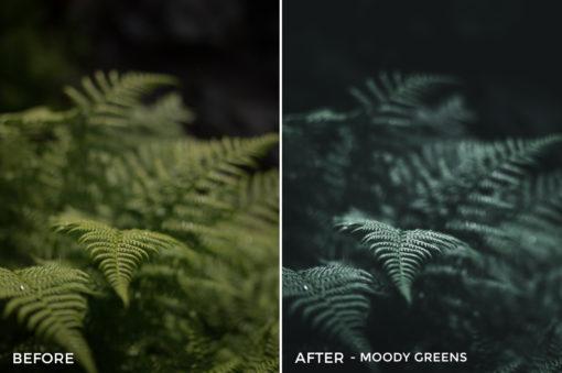 Moody Greens - Dmitry Shukin Lightroom Presets - FilterGrade