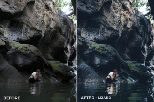 Lizard - Dmitry Shukin Lightroom Presets - FilterGrade