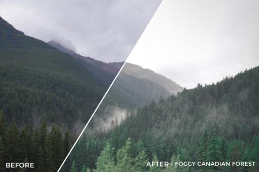 Foggy Canadian Forest - Niklas Nxploring Lightroom Presets - FilterGrade
