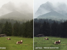 Mood Booster - Tim Kapffenstein Lightroom Presets - @the_camera_dude - FilterGrade