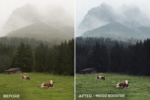 Mood Booster - Tim Kapffenstein Lightroom Presets - @the_camera_dude - FilterGrade