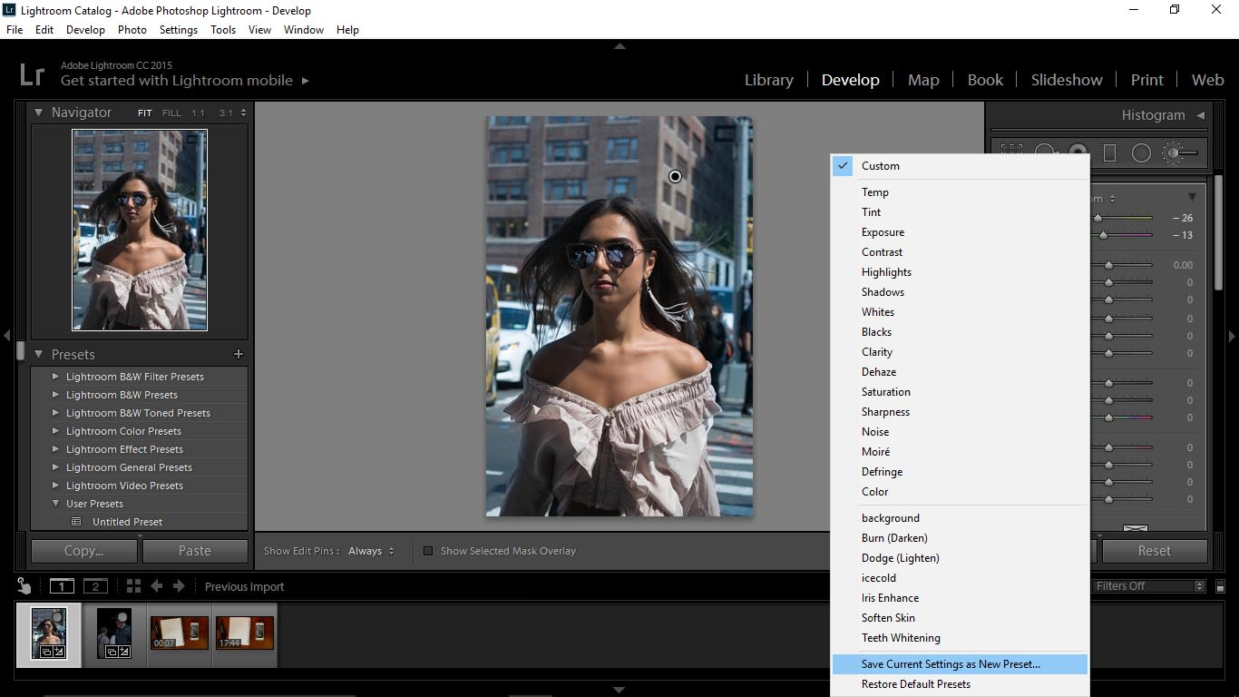 3 1 Using Adobe Lightroom to Create Custom Brushes - FilterGrade