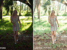 2 Forest - Sweet Teal Blog Lightroom Presets - FilterGrade