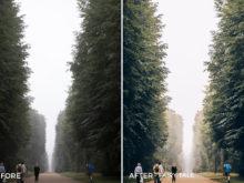 Fairy Tale - Tom Noske Lightroom Presets - FilterGrade
