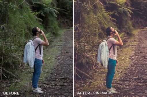 Cinematic - Tom Noske Lightroom Presets - FilterGrade