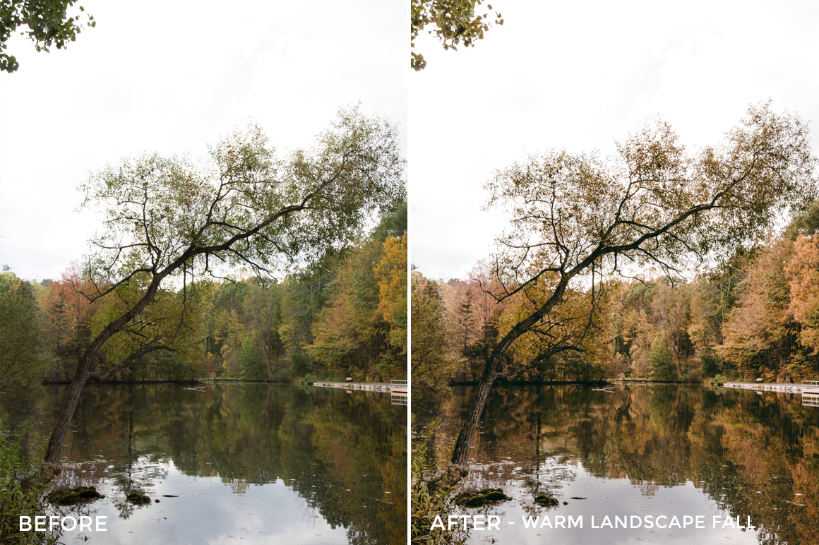 Warm Landscape fall - Jessie Raynard Lightroom Presets - FilterGrade