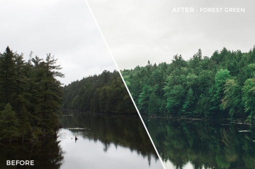 Forest Green - Jessie Raynard Lightroom Presets - FilterGrade