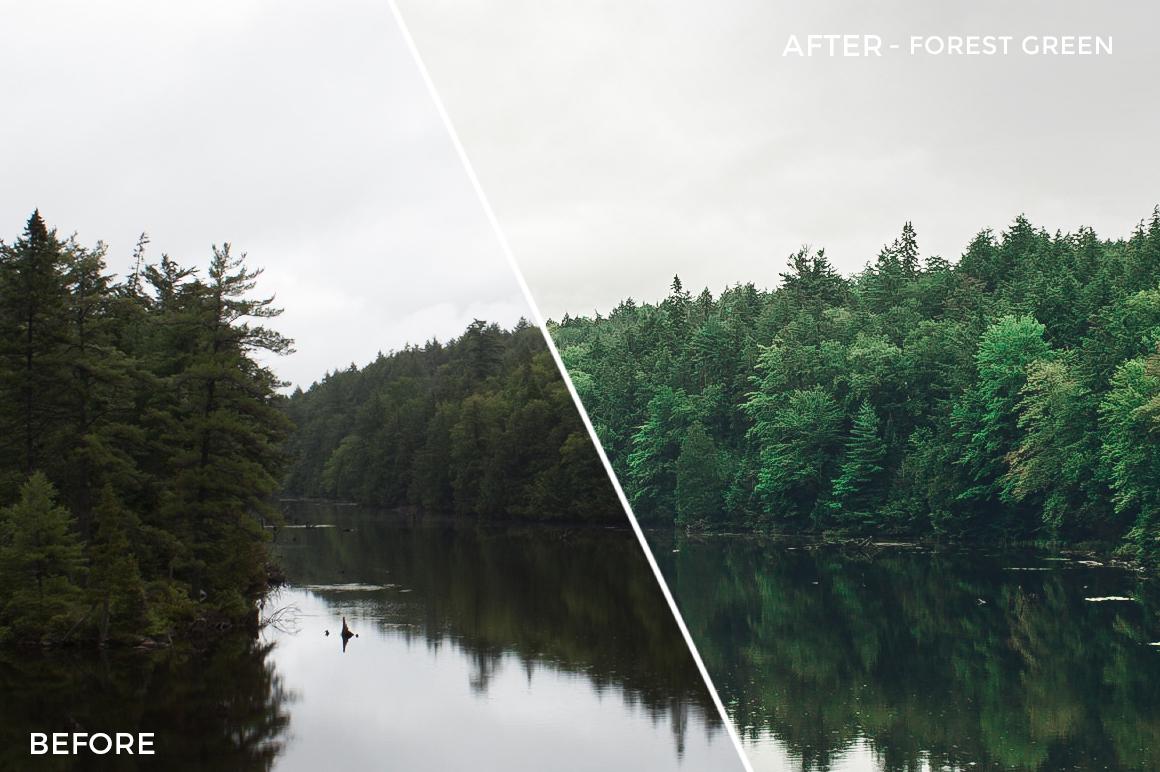 Forest Green - Jessie Raynard Lightroom Presets - FilterGrade