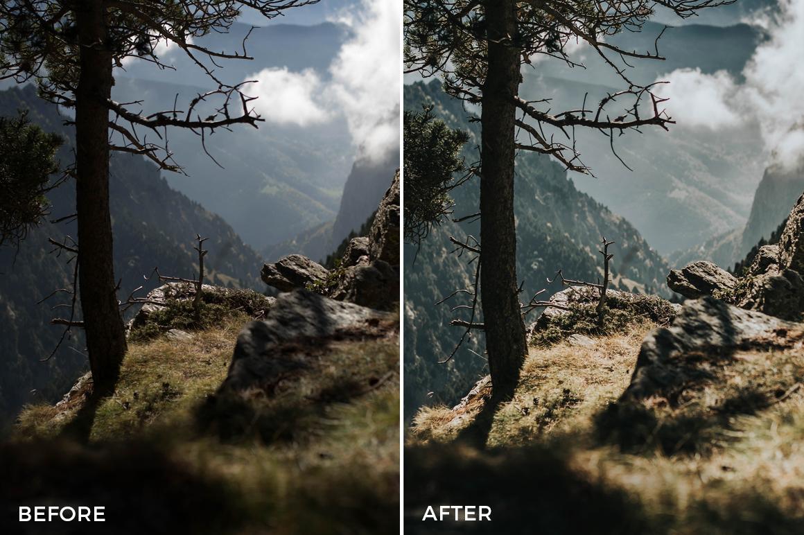 Joan Slye Landscape Lightroom Presets Filtergrade