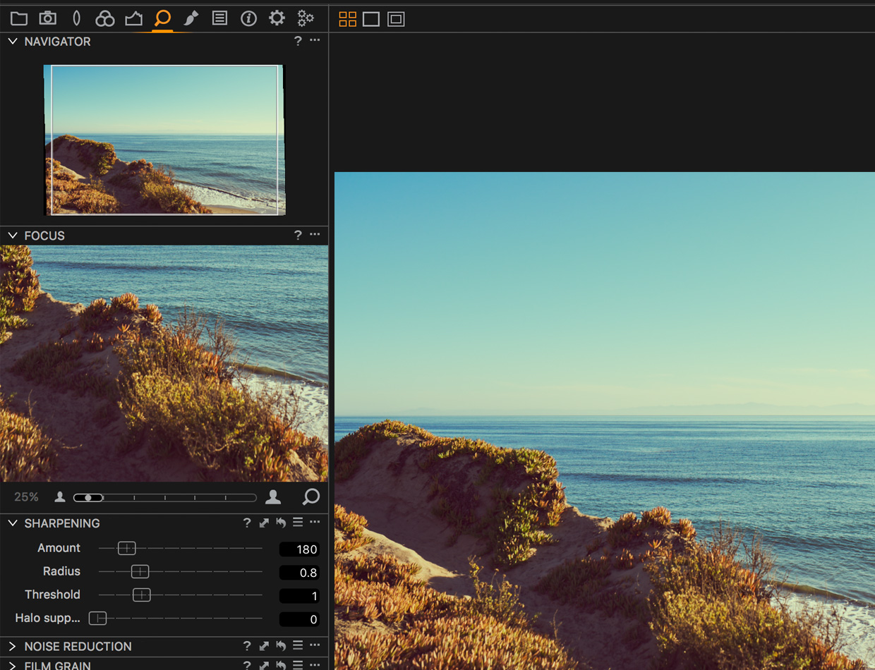 details tab capture one pro