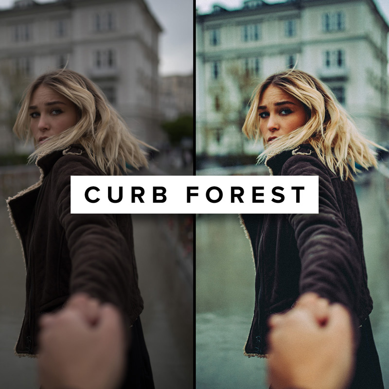 Curb-Forest---ROAD-TRIP-X-Lightroom-Preset---Basti-Hansen
