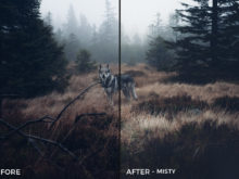 Misty - Kopernikk Lightroom Presets - FilterGrade