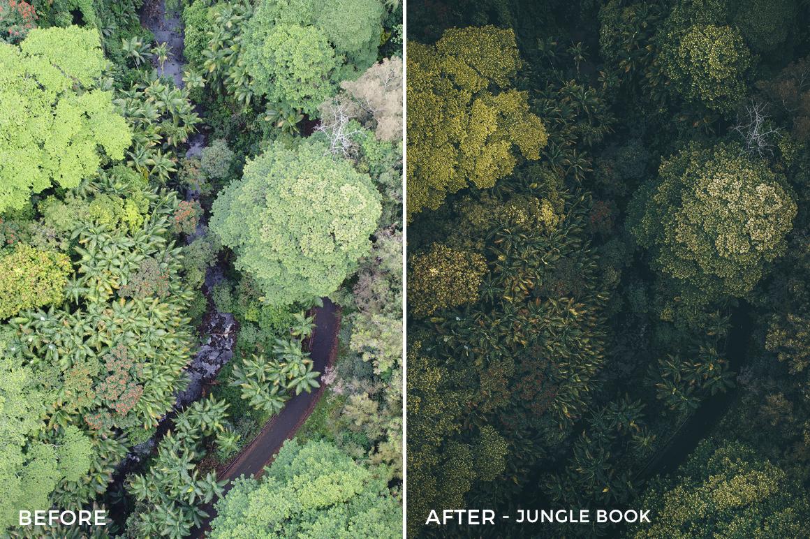 Jungle Book - Austin Welch Lightroom Presets - FilterGrade