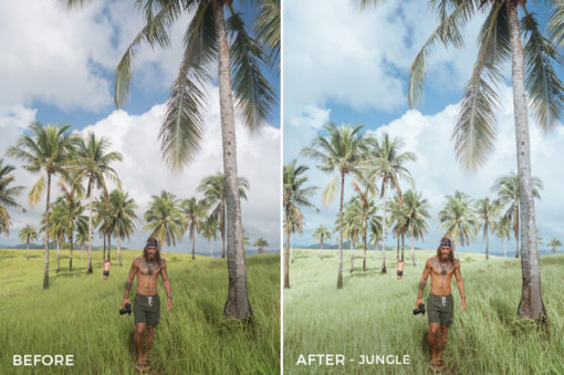 Jungle - Jackson Groves Lightroom Presets - FilterGrade