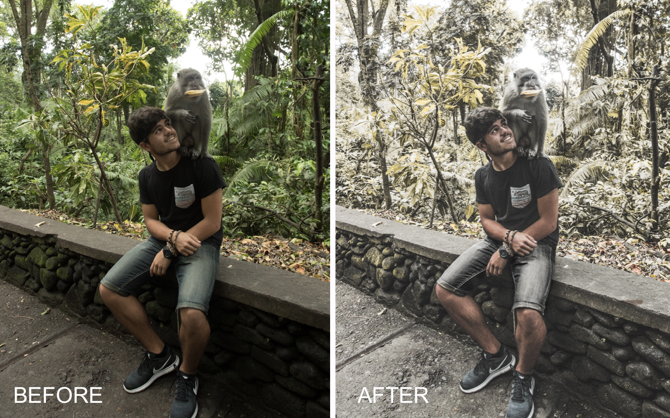 Made2Travel Lightroom Presets - Diogo Dias - FilterGrade