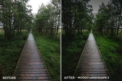 Moody Landscape 5 - Luca Habermann Lightoom Presets - FilterGrade