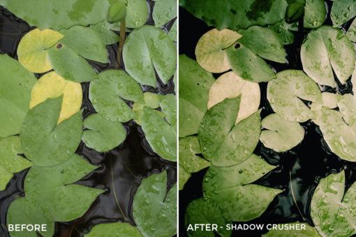 Shadow Crusher - Will Milne Lightroom Presets - FilterGrade