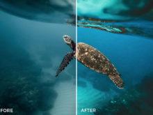 8 Nick Asphodel Artistic Tones Lightroom Presets - FilterGrade