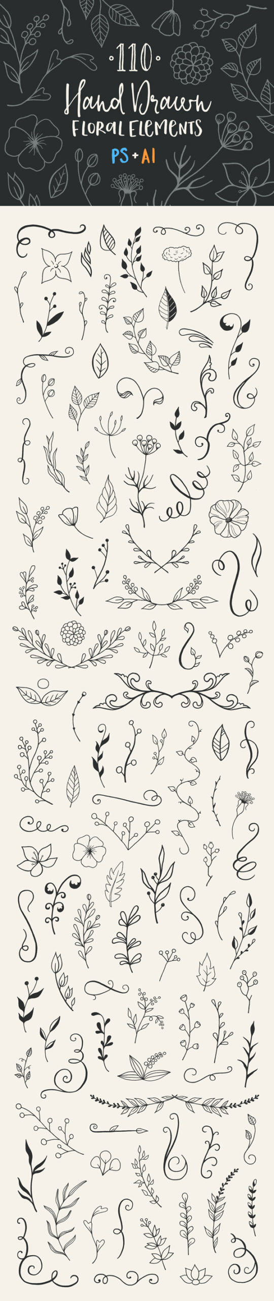 hand-drawn floral elements