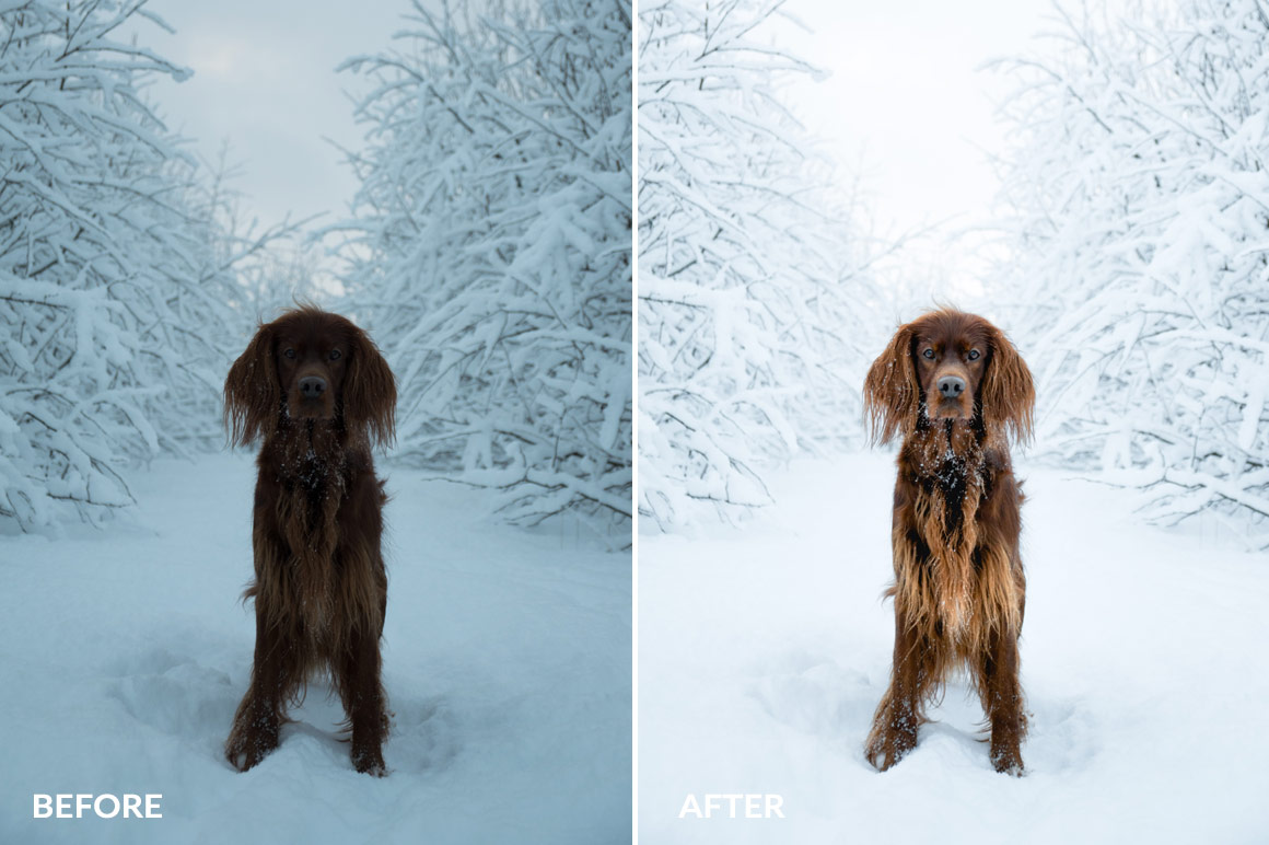 winter lightroom presets