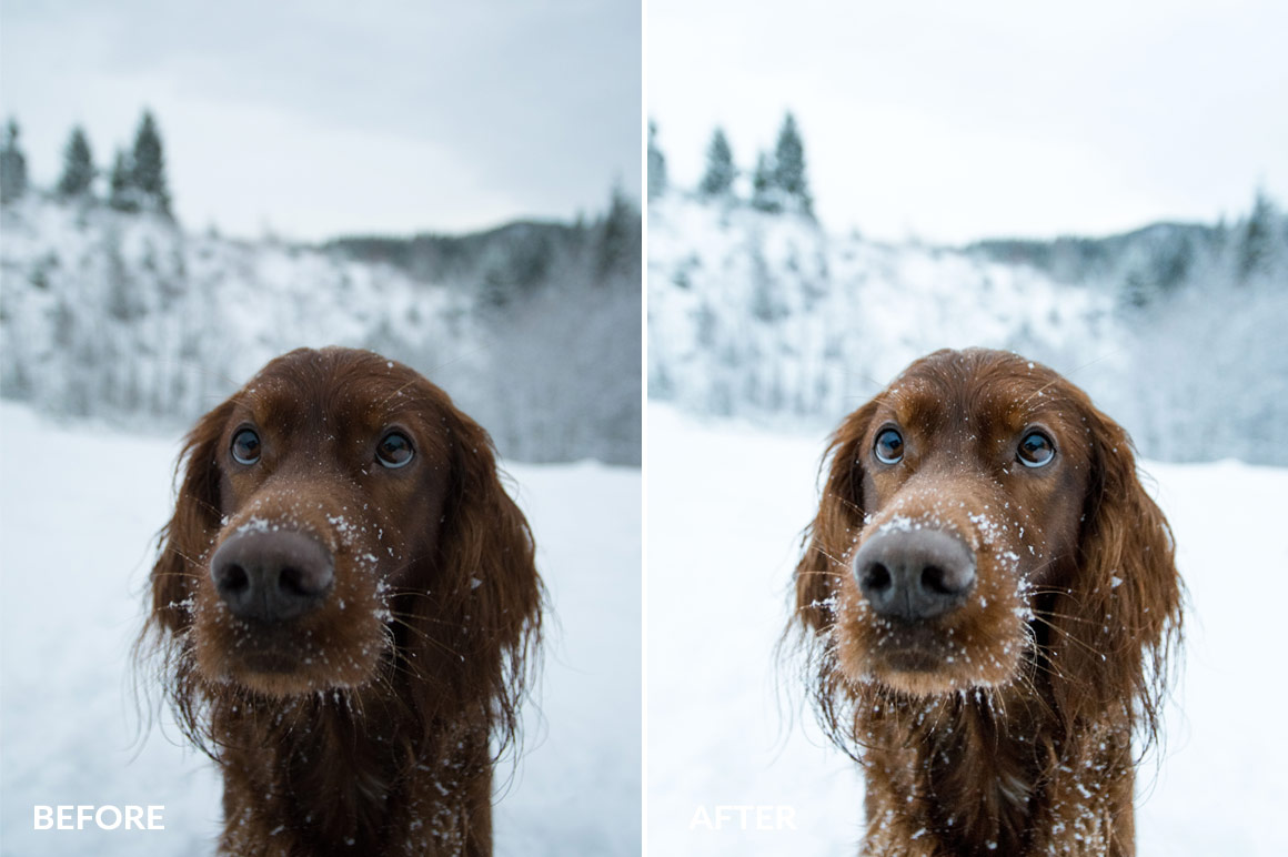 george and troja lightroom presets