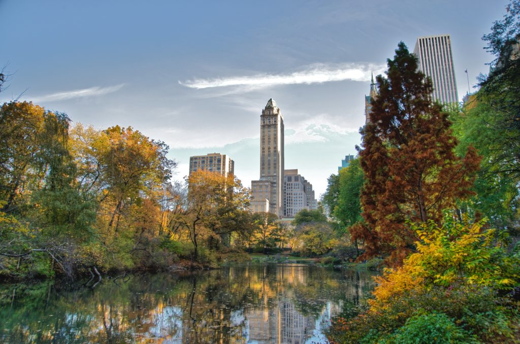 photography-destinations-central-park-new-york