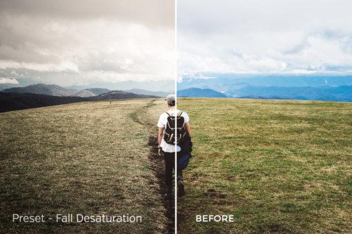 Fall Desaturation - Exposure Empire Lightroom Presets Vol. 2 - FilterGrade