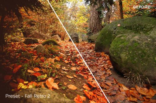 Fall Retro 2- Exposure Empire Autumn Lightroom Presets Vol. 1 - FilterGrade