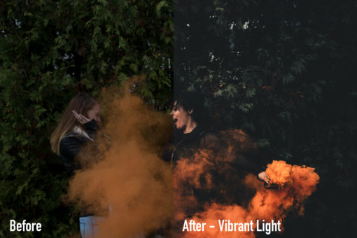 VIBRANTLIGHT - Moody Earth Tone Lightroom Presets by Brett Harpster - FilterGrade