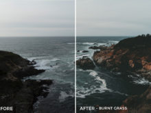 1 Burnt Grass - Kal Visuals Coastal Vibes Lightroom Presets - FilterGrade