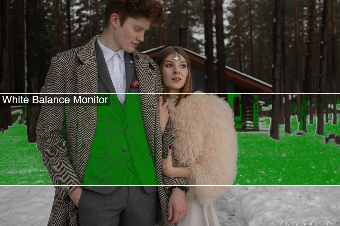 white balance monitor lut