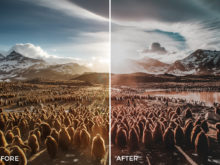 11 Nick Asphodel Film Lightroom Presets - FilterGrade