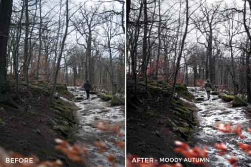 Moody Autumn - Bastian Schertel Lightroom Presets - FilterGrade