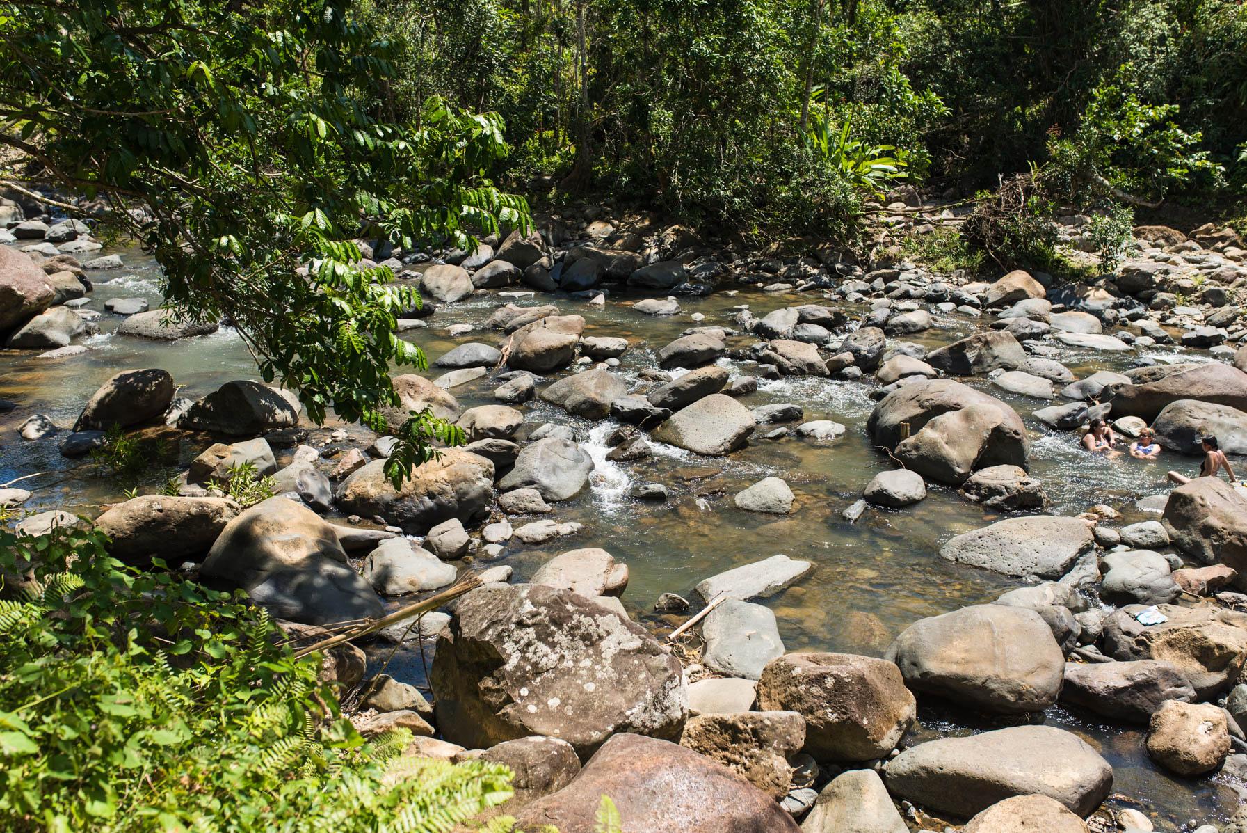 swimming in El Yunque