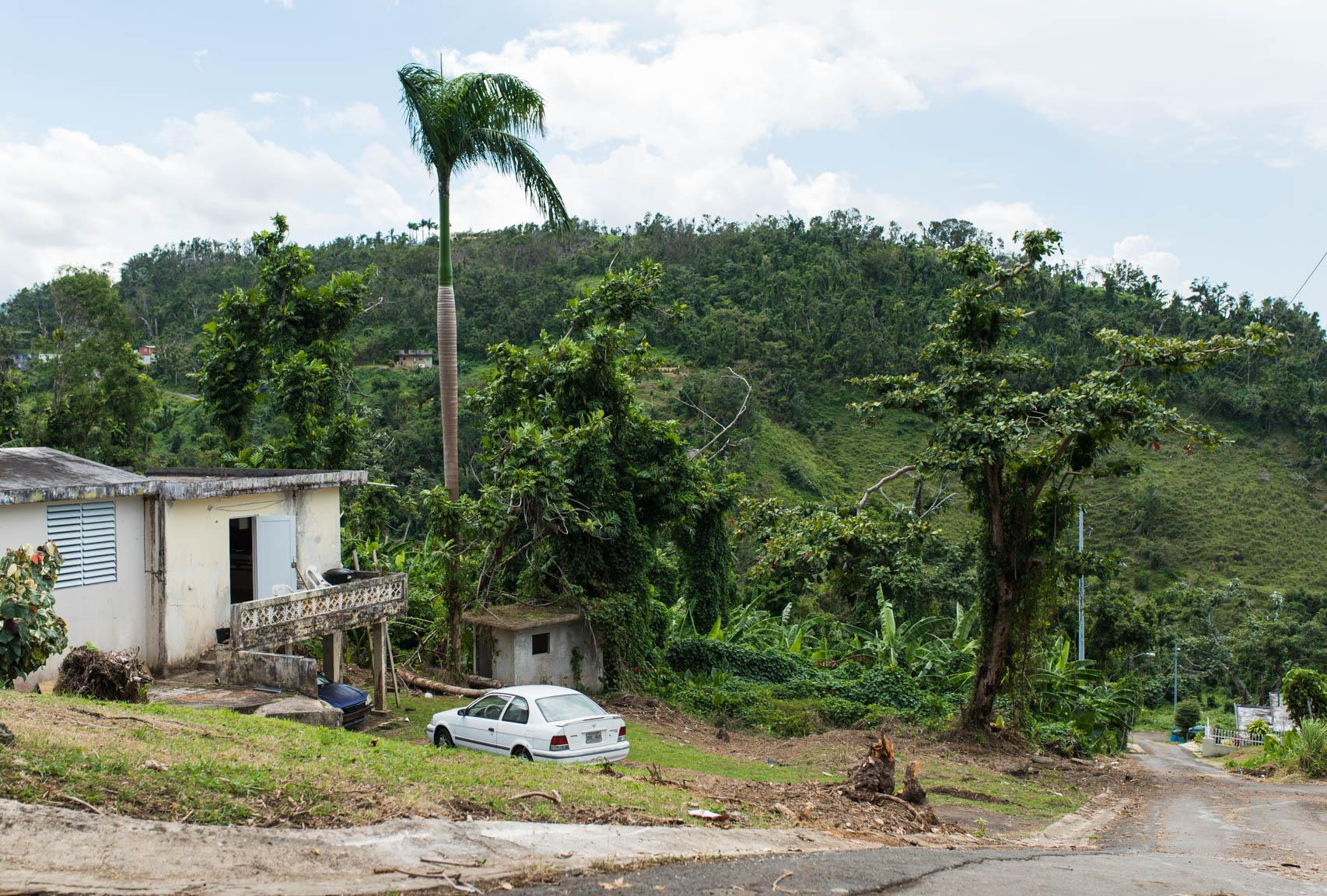 the edge of civilization and el yunque