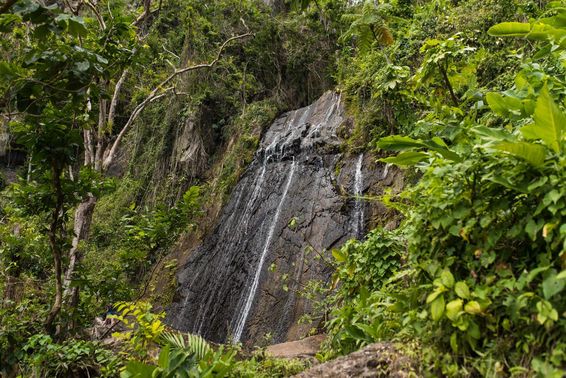 La Coca Falls waterfall in El Yunque Puerto Rico