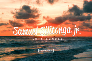 Samuel Silitonga Jr. LUTs Bundle - FilterGrade