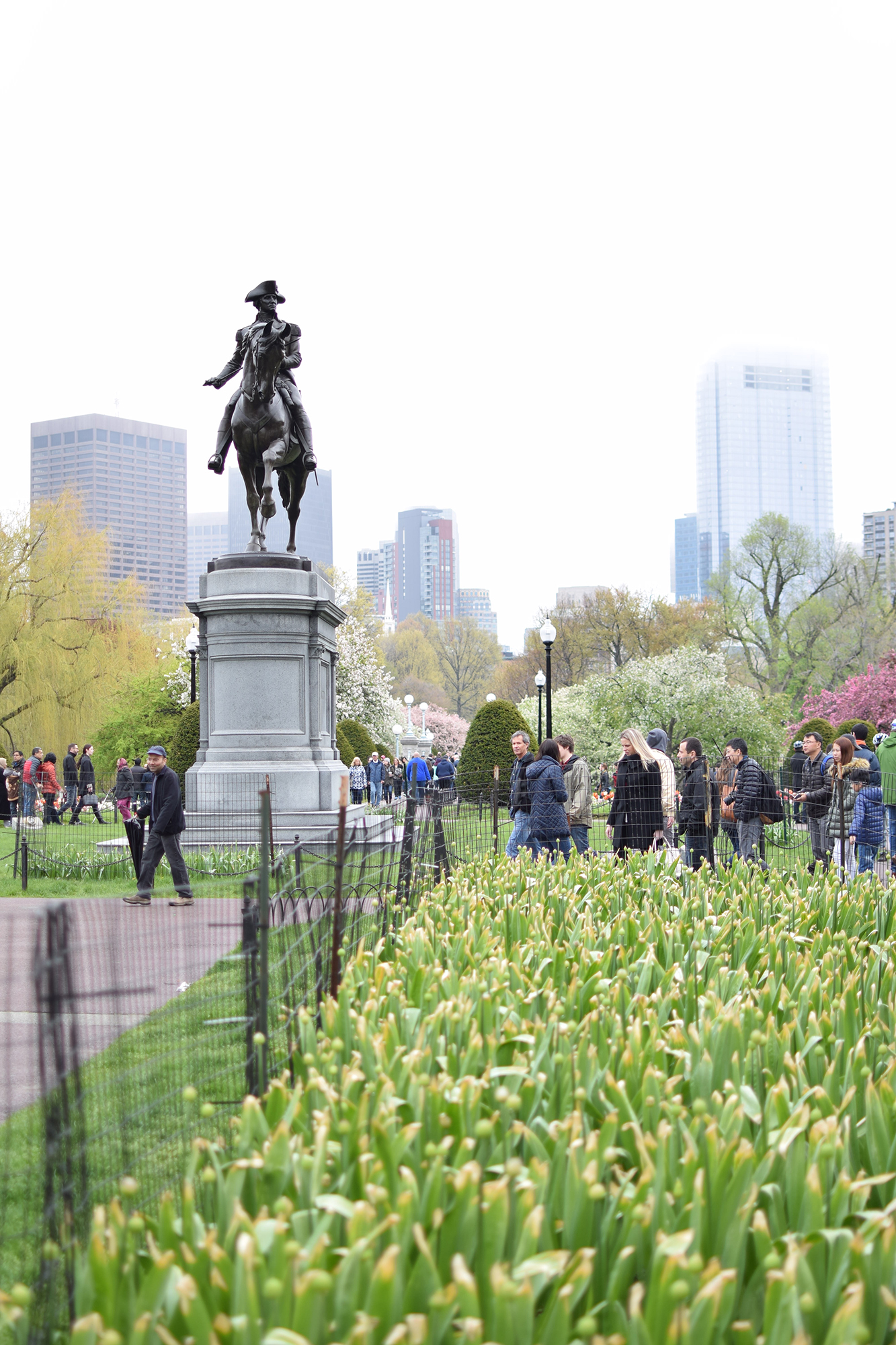 Boston Commons - 8 Fun Things to Do in Boston - FilterGrade