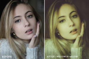 Rachel Lazatin Lightroom Presets 1 - 18 Essential Portrait Lightroom Preset Packs - FilterGrade