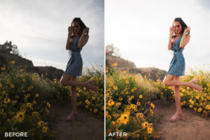 NEW Taylor Cut Films Lightroom Presets 2 - 18 Essential Portrait Lightroom Preset Packs - FilterGrade