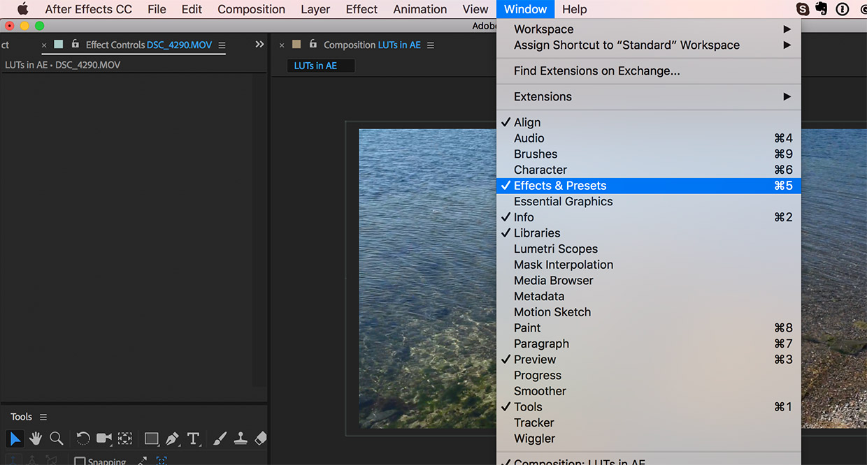 How to Import and Apply LUTs in After Effects - FilterGrade