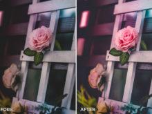 1 Nick Asphodel Fashion & Wedding Lightroom Presets - FilterGrade