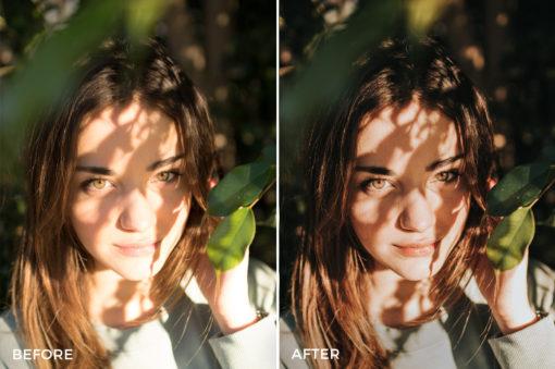 1 Joan Slye Portrait Lightroom Presets - FilterGrade