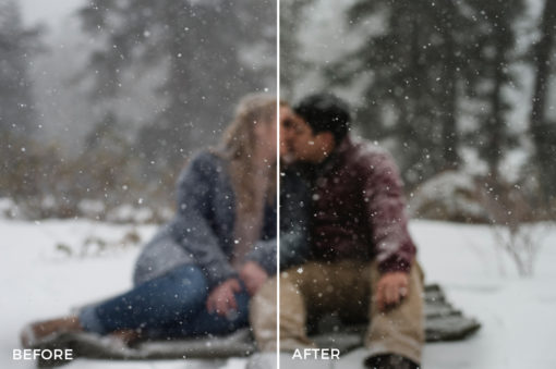 1 The Fresh Folk Lightroom Presets Collection - FilterGrade
