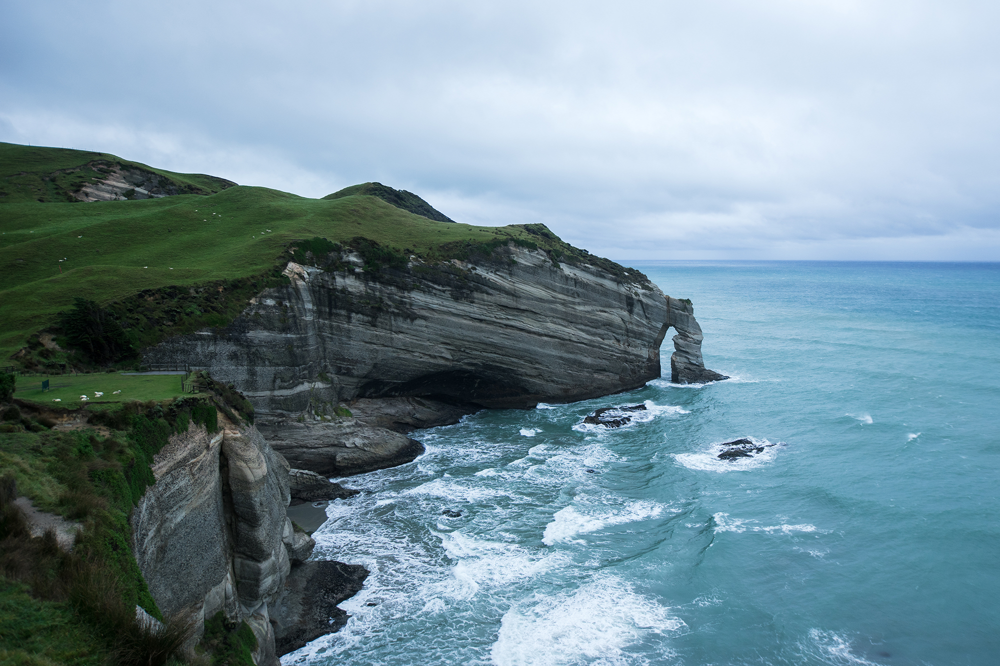 2 Road Tripping New Zealand with Marvin Kuhr - FilterGrade